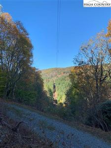 Photo of TBD 57a Kindreck Road, Mouth of Wilson, VA 24363 (MLS # 218616)