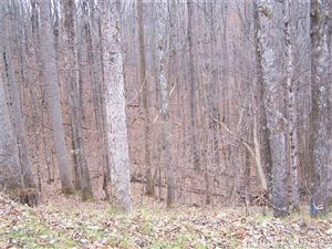 Photo of tbd Will Combs Hollow, Vilas, NC 28692 (MLS # 211617)