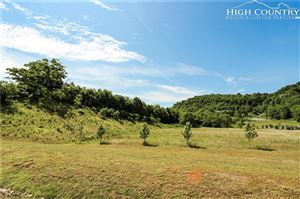 Tiny photo for TBD Highway 421, Boone, NC 28607 (MLS # 215617)