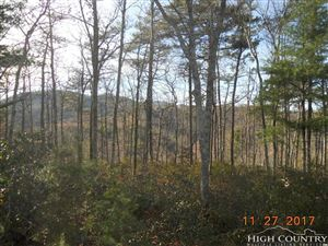 Photo of lot 320 Pepperoot Road, Boone, NC 28607 (MLS # 204627)