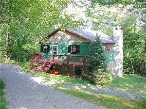 Photo of 849 Shelter Rock Circle, Sugar Mountain, NC 28604 (MLS # 217636)