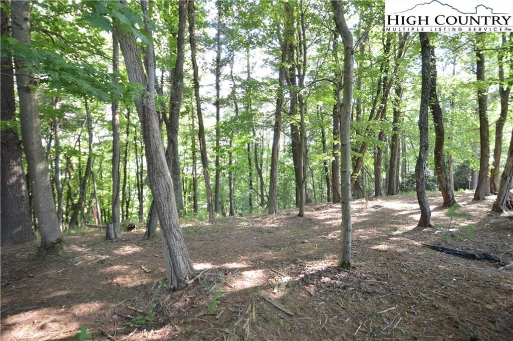 Photo of TBD VFW Drive #TRACT A, Boone, NC 28607 (MLS # 222644)