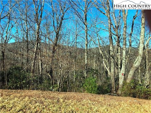 Photo of Lot 122 Firethorn Trail, Blowing Rock, NC 28605 (MLS # 219657)