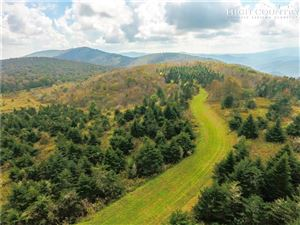 Photo of Lot 6 Woodland Springs Lane, Boone, NC 28607 (MLS # 209666)