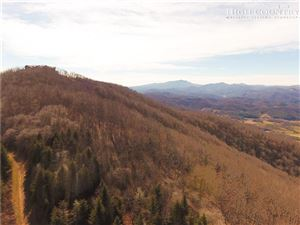 Photo of Lot 4 Woodland Springs Lane, Boone, NC 28607 (MLS # 209667)