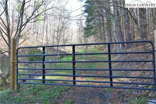 Photo of TBD West Mill Creek Road, Warrensville, NC 28693 (MLS # 229670)