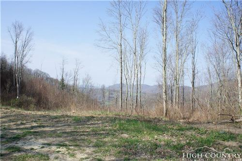 Photo of TBD Beaver Dam / Fork Ridge Road, Vilas, NC 28692 (MLS # 212681)