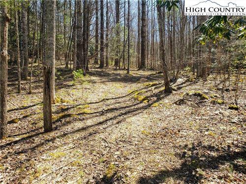 Photo of Lot 6 Sonterra Drive, Lansing, NC 28643 (MLS # 230681)