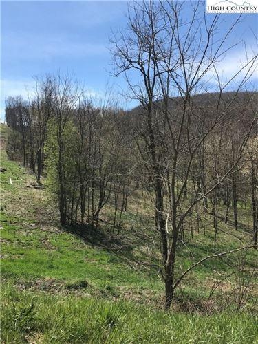 Tiny photo for tbd Cheek Mountain Road, Laurel Springs, NC 28644 (MLS # 214684)