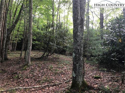 Photo of 108 Chicory Lane, Beech Mountain, NC 28604 (MLS # 224694)
