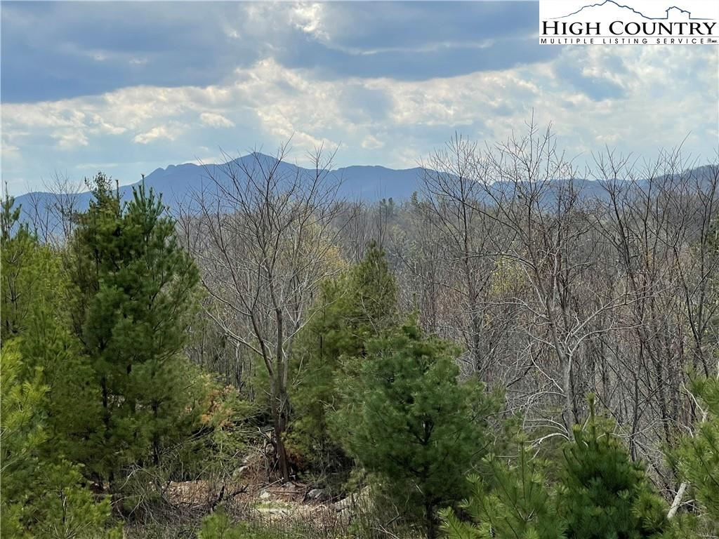 Photo for TBD Chestnut Drive, Blowing Rock, NC 28605 (MLS # 229697)