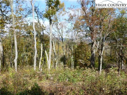 Photo of TBD Almost Heaven, Boone, NC 28607 (MLS # 230698)