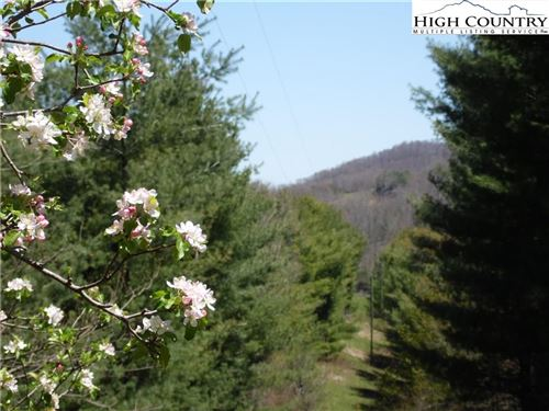 Photo of Lot #5 Alta Vista Lane, Piney Creek, NC 28663 (MLS # 223708)