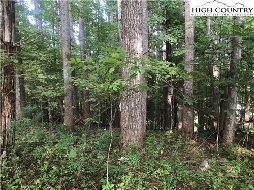 Photo of TBD Ray Road, West Jefferson, NC 28694 (MLS # 224712)