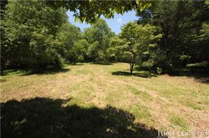 Photo of TBD Old Bridle Creek Road, Independence, VA 24348 (MLS # 208725)