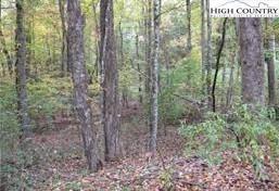 Photo of TBD Clearview Ridge Road, Crumpler, NC 28617 (MLS # 233753)
