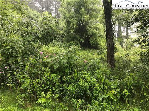 Photo of A3 Adams Cemetery Road, Vilas, NC 28692 (MLS # 223754)