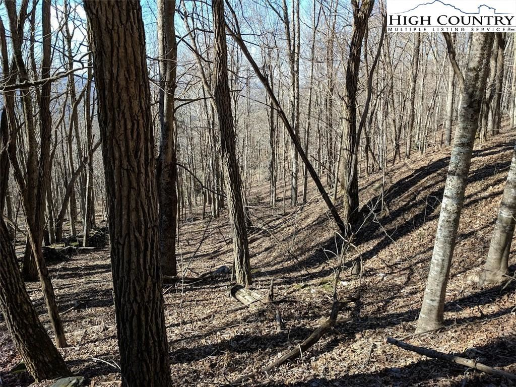 Photo of TBD Wolf Ridge Trail Trail, Boone, NC 28607 (MLS # 227758)