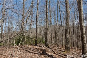 Photo of 601 Ridge Run, Linville, NC 28646 (MLS # 206777)