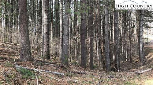 Photo of TBD East Hidden Mountain Lane, Crumpler, NC 28617 (MLS # 231781)