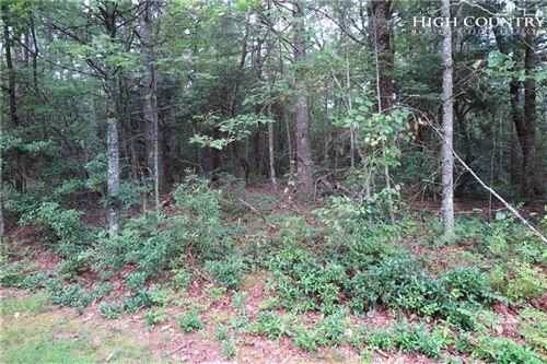 Photo of TBD Brooks & Brush Creek Road, Glade Valley, NC 28627 (MLS # 215786)
