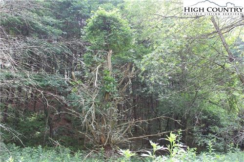 Tiny photo for TBD West Reno Road, West Jefferson, NC 28694 (MLS # 231787)