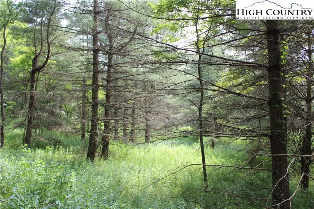 Photo for TBD West Reno Road, West Jefferson, NC 28694 (MLS # 231787)