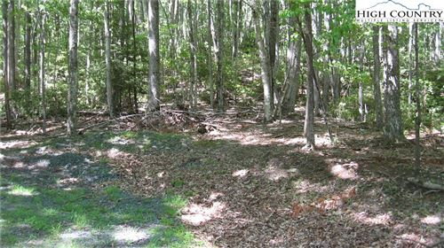 Photo of 106 Cedar Lane, Beech Mountain, NC 28604 (MLS # 223811)