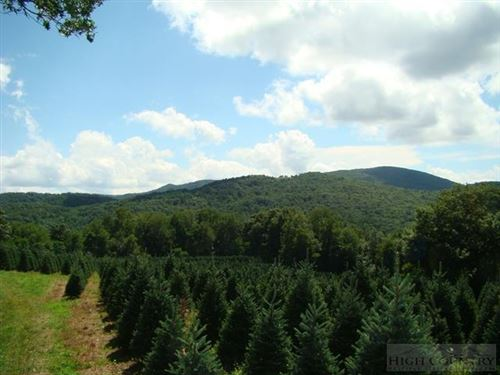 Photo of Tbd Meat Camp Road, Boone, NC 28607 (MLS # 39203811)