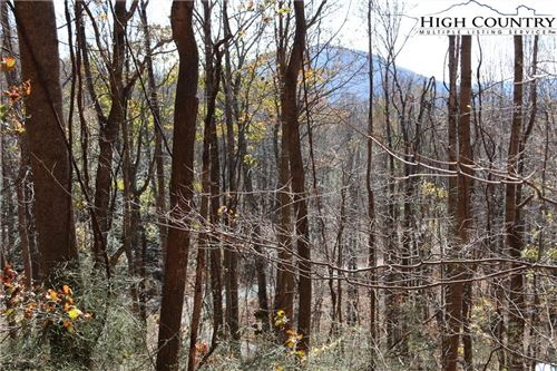Photo of Lot 14 Mountain Shadows Road, Jefferson, NC 28640 (MLS # 226815)