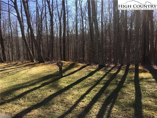 Photo of Lot 75 Sweetgrass Drive, Blowing Rock, NC 28605 (MLS # 219836)