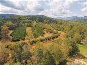 Photo of 350 Boone Fork Road, Boone, NC 28607 (MLS # 210838)