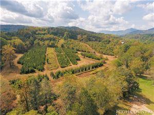 Photo of 350 Boone Fork Road, Boone, NC 28607 (MLS # 210838)