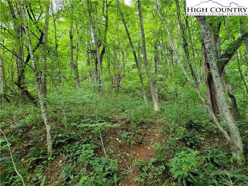 Photo of Lot 612 Mountain Dew Dr, West Jefferson, NC 28694 (MLS # 232858)