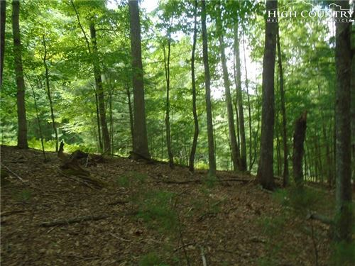 Photo of Lot 18, 88, 89 Colby Miller and Marshal Road, Jefferson, NC 28640 (MLS # 215909)