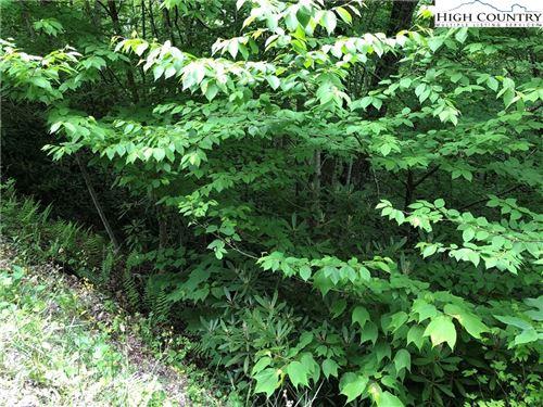 Photo of 105 Laurel Lane, Beech Mountain, NC 28604 (MLS # 230912)