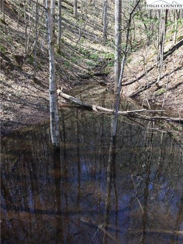 Photo of TBD Tucker Road, Lansing, NC 28643 (MLS # 230921)