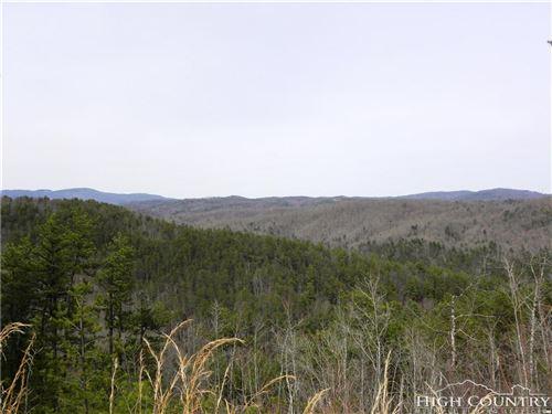 Photo of Lot 1332 Pogonia Road, Boone, NC 28607 (MLS # 213925)
