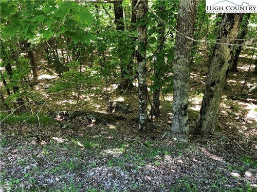 Photo of 113 Upper Grouse Ridge Road, Beech Mountain, NC 28604 (MLS # 230926)