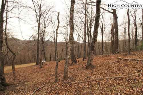 Photo of TBD NC Hwy 194 S, Todd, NC 28684 (MLS # 228936)