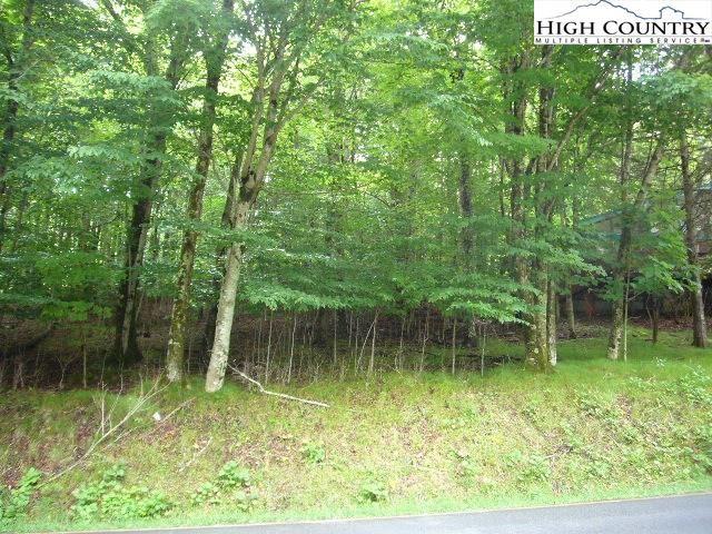 Photo of 418 Charter Hills Road, Beech Mountain, NC 28604 (MLS # 222942)