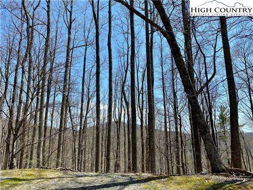 Photo of tbd Vista Circle, Boone, NC 28607 (MLS # 233953)