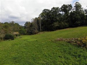 Photo of TBD Highway 16 N Highway, Grassy Creek, NC 28631 (MLS # 217958)