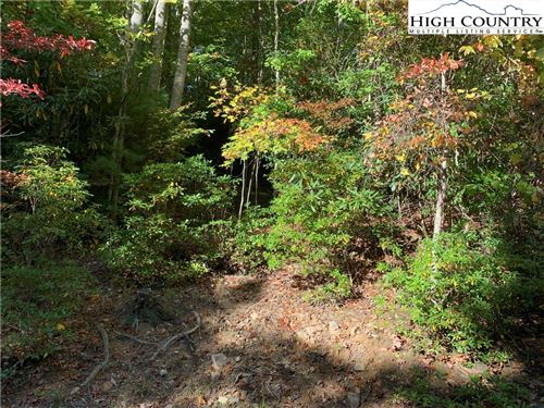 Photo of 146 Rhododendron Drive, Beech Mountain, NC 28604 (MLS # 233968)