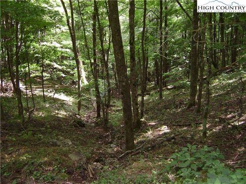 Photo of 48 & 49 Thorncilff Drive, Seven Devils, NC 28604 (MLS # 232977)