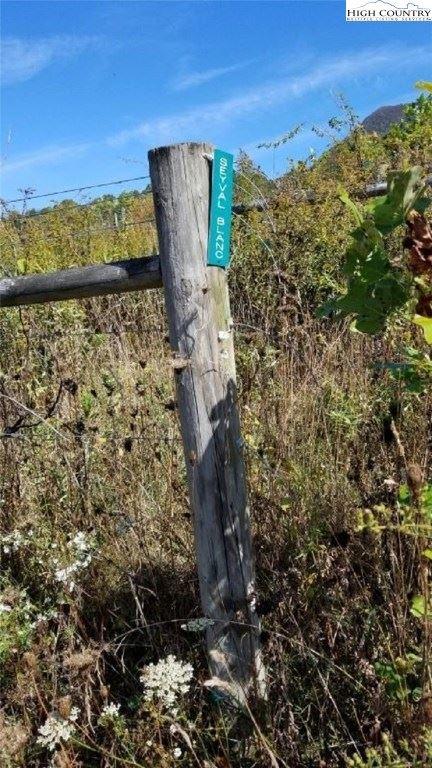 Photo of TBD Cherry Tree Lane, Creston, NC 28615 (MLS # 218979)