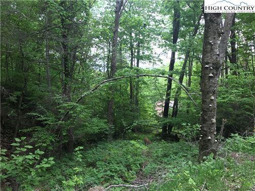 Photo of 207 Foxgrape Hollow Road, Beech Mountain, NC 28604 (MLS # 207982)