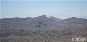 Photo of 20 W Whitetail Drive, Sapphire, NC 28774 (MLS # 91485)