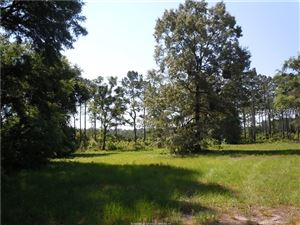 Photo of 41 Camp Eight ROAD, Bluffton, SC 29910 (MLS # 390050)