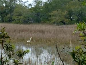 Tiny photo for 17 Wild Turkey Run, Hilton Head Island, SC 29926 (MLS # 374201)